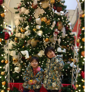iphone/image-20121221203052.png